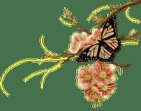 Papillon sur branche