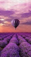 lavender background bp