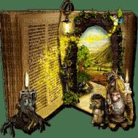 fantasy book livre fantaisie