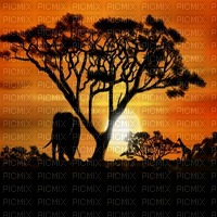 Africa background bp