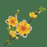 Japanese yellow flowers, sunshine3