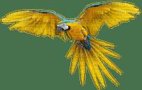 Kaz_Creations Parrot Birds Bird Yellow