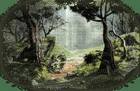 forest landscape paysage forêt