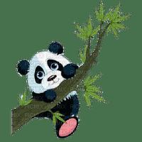 PANDA BAer  BRANCH