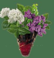 Pot de lilas