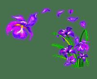 FLOWERED CORNER