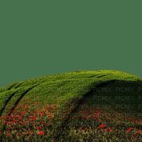background fond spring printemps frühling primavera весна wiosna gras grass rasen field feld garden jardin paysage landscape tube overlay