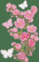 Sakura fleur rose pink flower butterfly