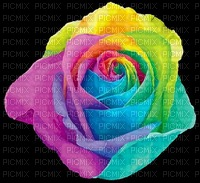 image encre couleur texture fleurs mariage rose printemps arc en ciel edited by me