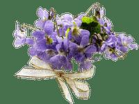 Fleurs.bouquet.Flowers.Violet.Victoriabea