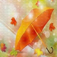 umbrella bg autumn parapluie fond automne