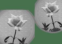 blommor-flowers--gray--grå