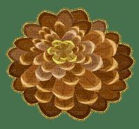 pine corn