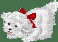 Kaz_Creations Valentine Deco Love Cute Dog Pup