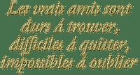 Amitié.Text.Phrase.Victoriabea