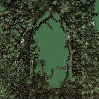 goth frame cadre gothique