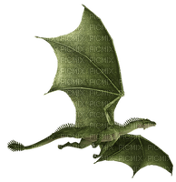 dragon, lohikäärme