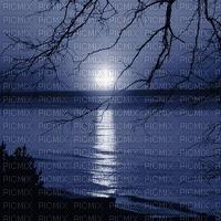 Full moon nightime