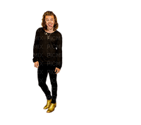 Kaz_Creations Harry Styles One Direction Singer Band Music
