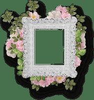 frame cadre rahmen tube vintage retro white blanc pictures flower fleur blossom blumen deco spring printemps fleurs