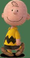 peanuts charlie brown