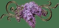 Déco lilas
