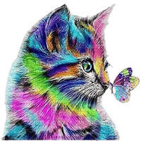 cat chat katze spring printemps summer ete  tube sommer animal animals animaux art colored colorful