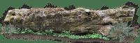 stone stein deco forest wald