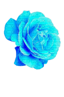 turquoise rose deco