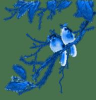 Birds.oiseaux.branche.Blue.Victoriabea
