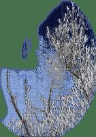 chantalmi  hiver winter neige snow noël déco branche