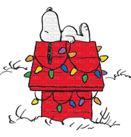 charlie brown christmas snoopy  noel