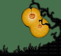 hal citrouille