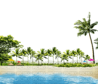 fond background sea meer mer ocean océan ozean    summer ete beach plage  strand  sand sable  paysage landscape island ile insel tube palm tree