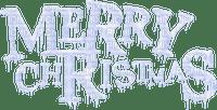 MERRY CHRISTMAS TEXT BLUE WHITE