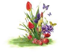 spring printemps frühling primavera весна wiosna  grass course race herbe gras rasen garden jardin tube deco flower fleur blumen