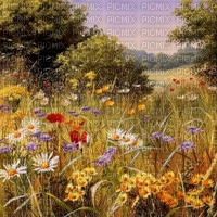 poppy coquelicot fond loly33 painting paysage
