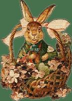 easter bunny basket vintage lapin pâques