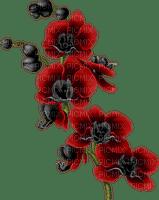 fleur rouge.Cheyenne63