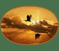 BIRD CLOUDS oiseaux nuages