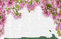 FLOWERING FRAME BORDER fleur cadre bordure