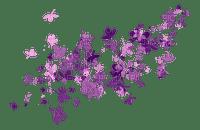 minou52-fiori viola-lila-blommor