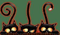 HALLOWEEN BLACK CATS chat noir