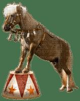 cheval.Cheyenne63