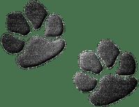pattes de chats