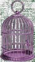 Cage.jaula.purple.Deco.violette.Victoriabea
