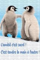 amitié pingouin
