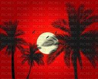 paysage ,Afrique,coucher de soleil, mer, palmiers, vacances, croisière,Pelageya