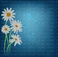 background  blue  flowers_Blue DREAM 70