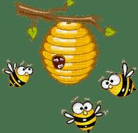 beehive  bees abeille cocon de ruche